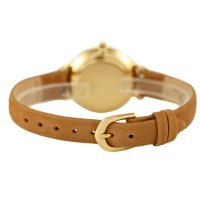 Bisset BSAF29GISX03BX zegarek złoty klasyczny Klasyczne pasek