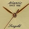 Złote zegarki - zdjęcie