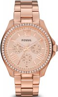 zegarek  Fossil AM4483