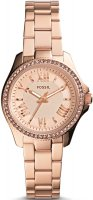 zegarek damski Fossil AM4578