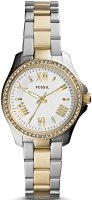 zegarek  Fossil AM4579