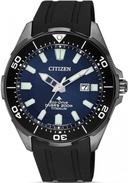 Zegarek Citizen BN0205-10L - duże 1