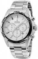 zegarek męski Festina F16766-1