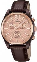 zegarek męski Festina F16863-1