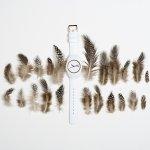 Zegarek damski ICE Watch ice-glam ICE.000978 - duże 9