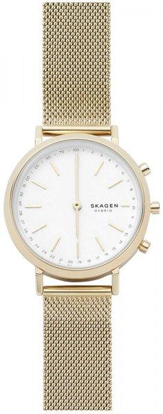 Zegarek Skagen SKT1405 - duże 1
