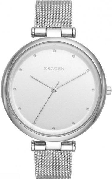 Zegarek Skagen SKW2485 - duże 1