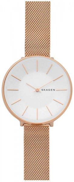Zegarek damski Skagen karolina SKW2688 - duże 1