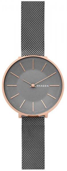 Zegarek Skagen SKW2689 - duże 1