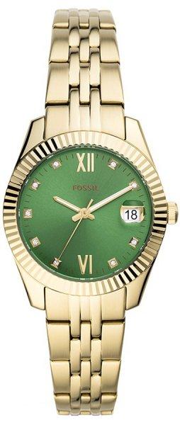 ES4903 Fossil - duże 3