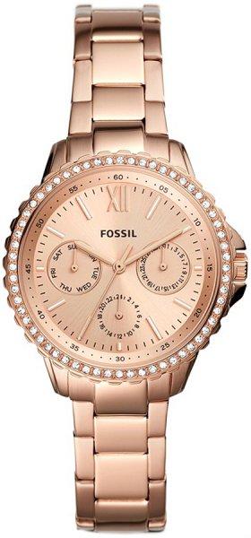 Fossil ES4782