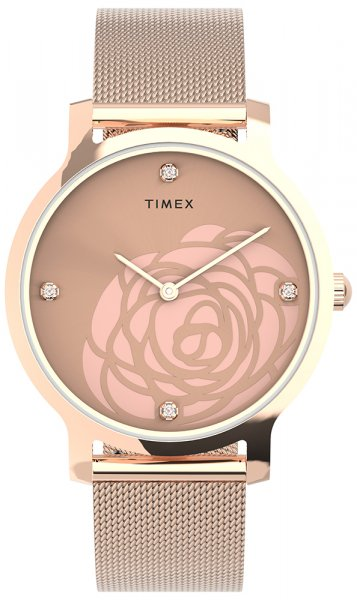 Timex TW2U98100