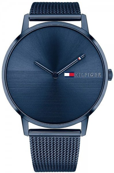 Zegarek Tommy Hilfiger 1781971 - duże 1