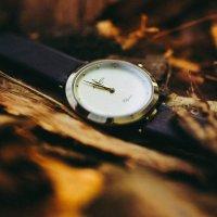 Zegarek damski Atlantic elegance 29036.45.31L - duże 2