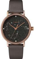 Zegarek damski Timex celestial opulence TW2T87700 - duże 1